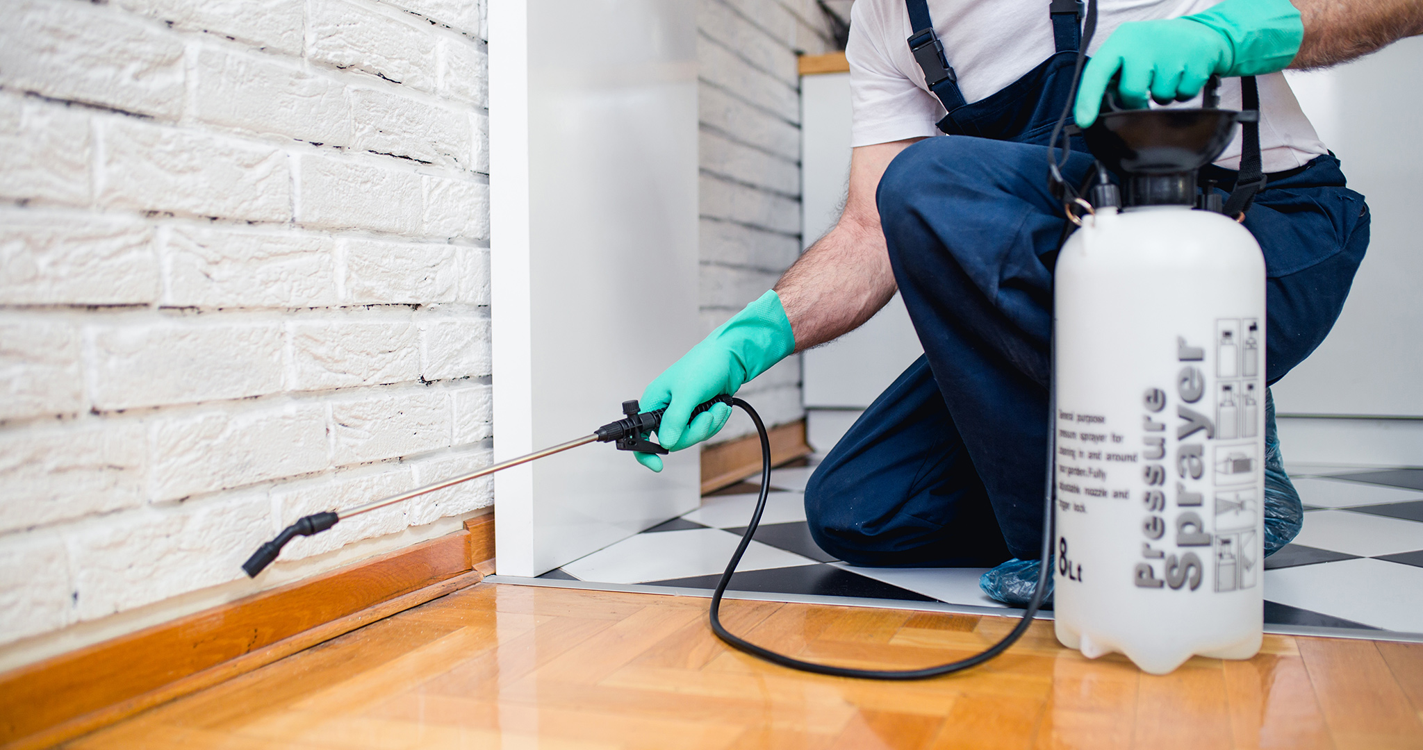 PestControl GettyImages 952779326